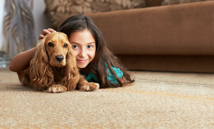 Clearing Your Home of Pets and Children